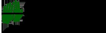 Marasca